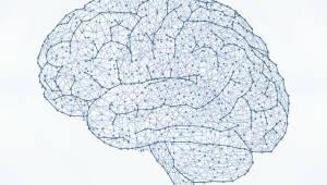 {htmlspecialchars(정부, 국가 차원 뇌 지도 연구 착수…4000억 규모 예타 사업 추진)}