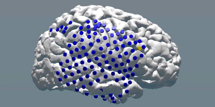 미국 펜실베이니아대 연구진은 간질환자의 뇌에 전극을 심어 기억 저장 기능이 떨어질 때 자극을 주자 기억력이 높아진다는 연구결과를 내놨다. 사진 속 파란색 점이 전기자극을 준 뇌 부분인데 특히 노란색 점 부분에 적절한 타이밍에 맞춰 전기자극을 주자 기억 저장 기능이 좋아졌다. (출처: University of Pennsylvania)