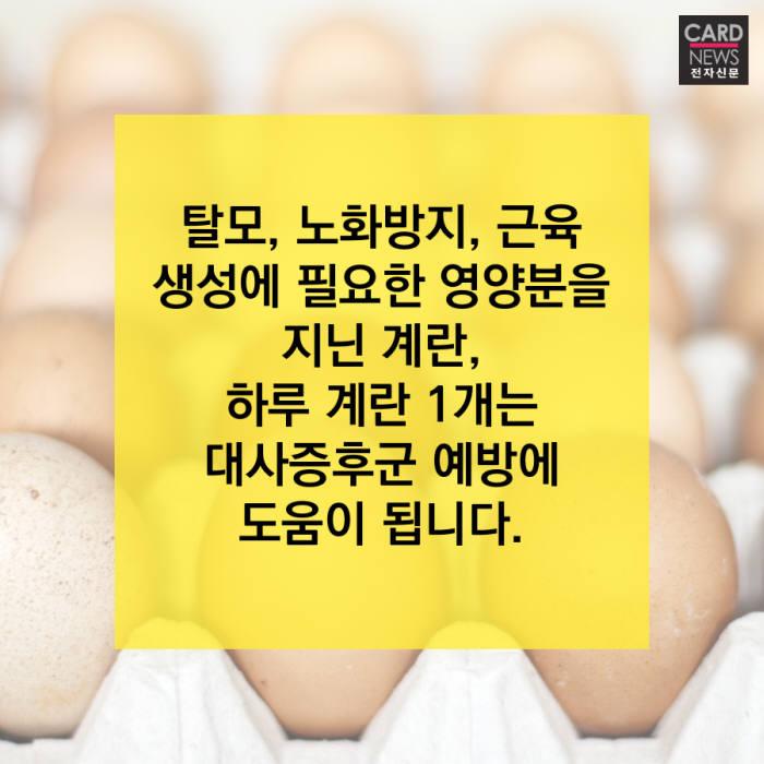 [카드뉴스]하루 계란 1개로 건강 지키세요