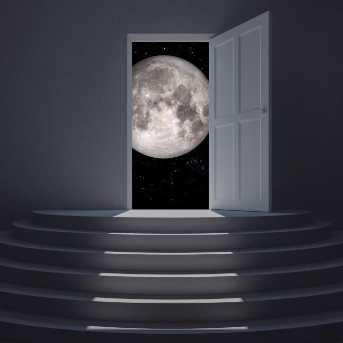 [과학 핫이슈]달 향한 꿈