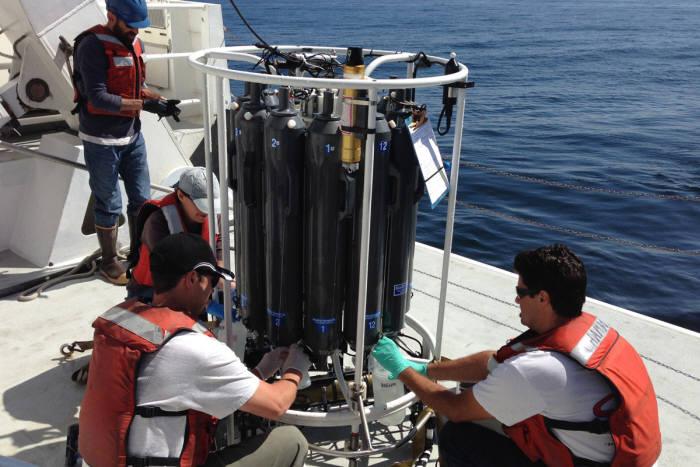 연구진들이 몬테레이만에서 채집한 바닷물에서 eDNA를 분석하고 있다. 출처 : Collin Closek