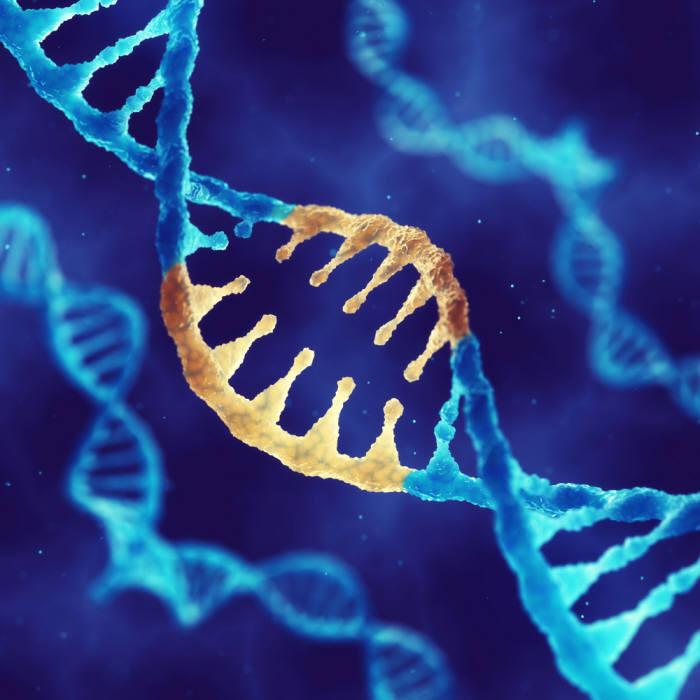 디지털 정보를 고분자 물질인 합성DNA 안의 염기서열 정보로 저장할 수 있다. 출처 : shutterstock