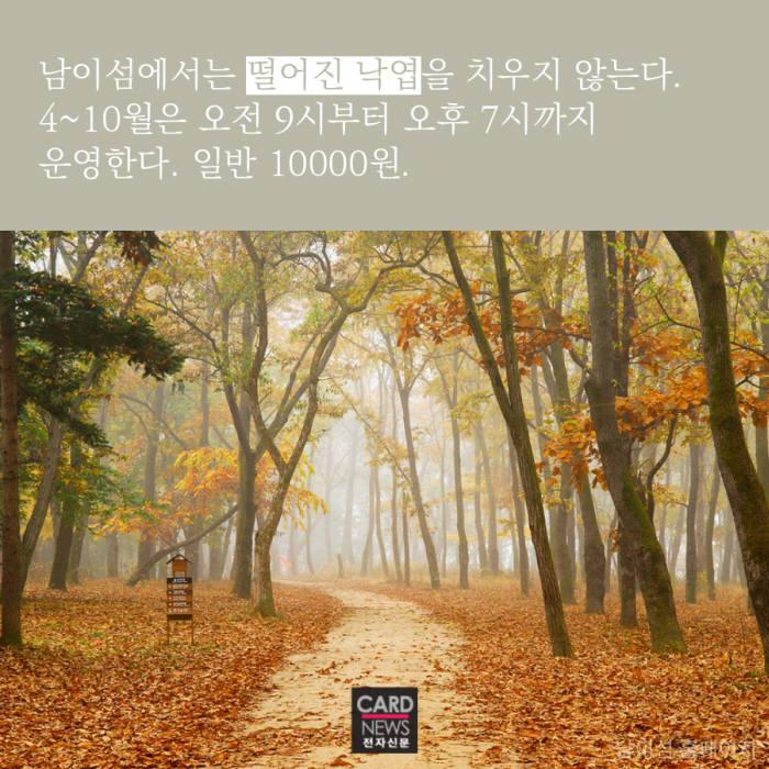 [카드뉴스]가을바람 따라 훌쩍 떠나볼까