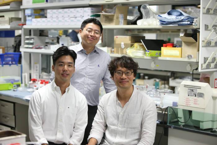 이중요각구조체 대면적 구현 기술 개발에 참여한 연구진. 왼쪽부터 최재호 학생, 김신현교수, 김희탁 교수