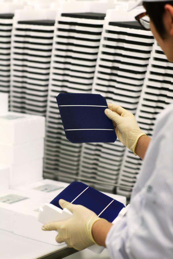 신성이엔지 직원이 생산된 태양전지를 살펴봤다. [자료:신성이엔지]