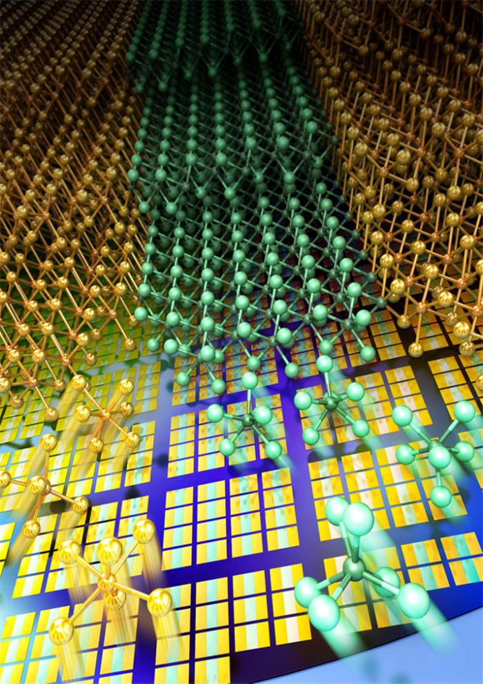 이번 연구를 활용한 2차원 전자소자 구현의 모식도