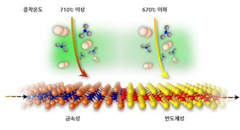 같은 물질임에도 증착 온도를 달리해 금속과 반도체로 성질이 나뉜 이텔루륨화몰리브덴(MoTe2)
