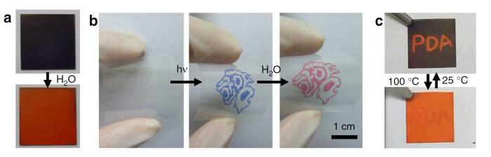 사진 1. 김종만 한양대 화학공학과 교수팀이 개발한 특수 필름은 물이 닿은 부분만 빨간색으로 변한다. 이를 이용해 손가락에 있는 땀구멍 패턴을 추출할 수 있다. 출처: 한양대