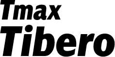 티맥스소프트 티베로, 경찰청 치안정보시스템에 외산 제치고 공급