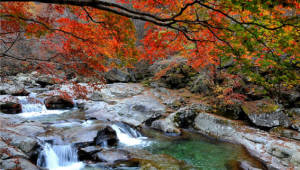 월악산국립공원 등 6곳 관광지 환경성적표지 인증