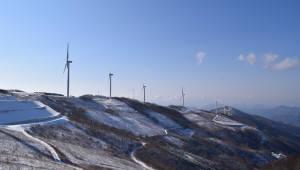 올해 태양광·풍력사업 기대이하...규제완화 정책 필요