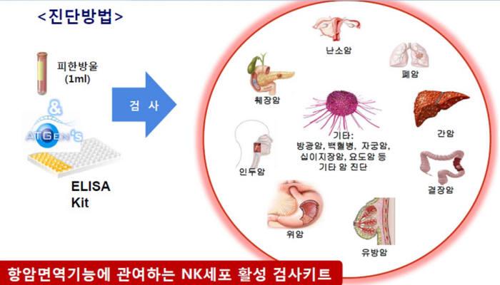 에이티젠이 이번에 출시한 '엔 케이 뷰 키트'의 진단방법