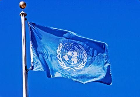 유엔 엠블럼. [자료:유엔 공식홈페이지]