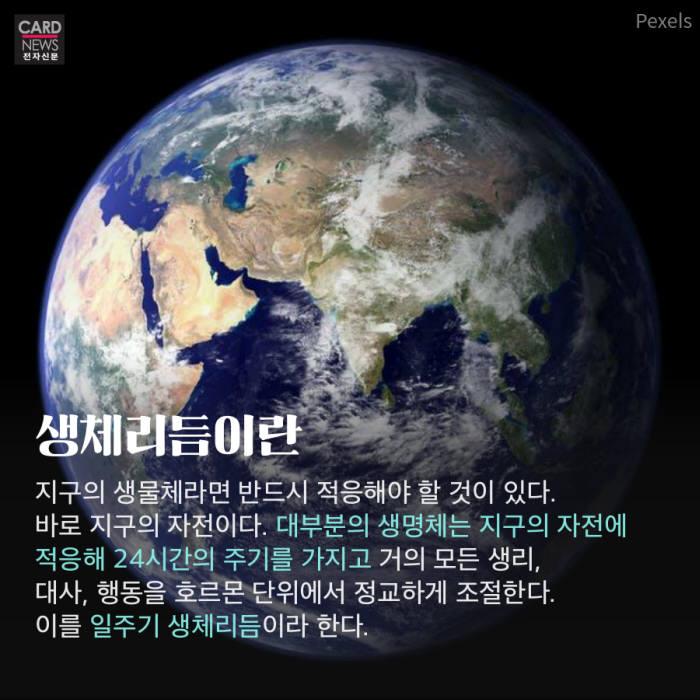 [카드뉴스]밤이 되면 졸린 이유? '24시간 생체시계'의 비밀