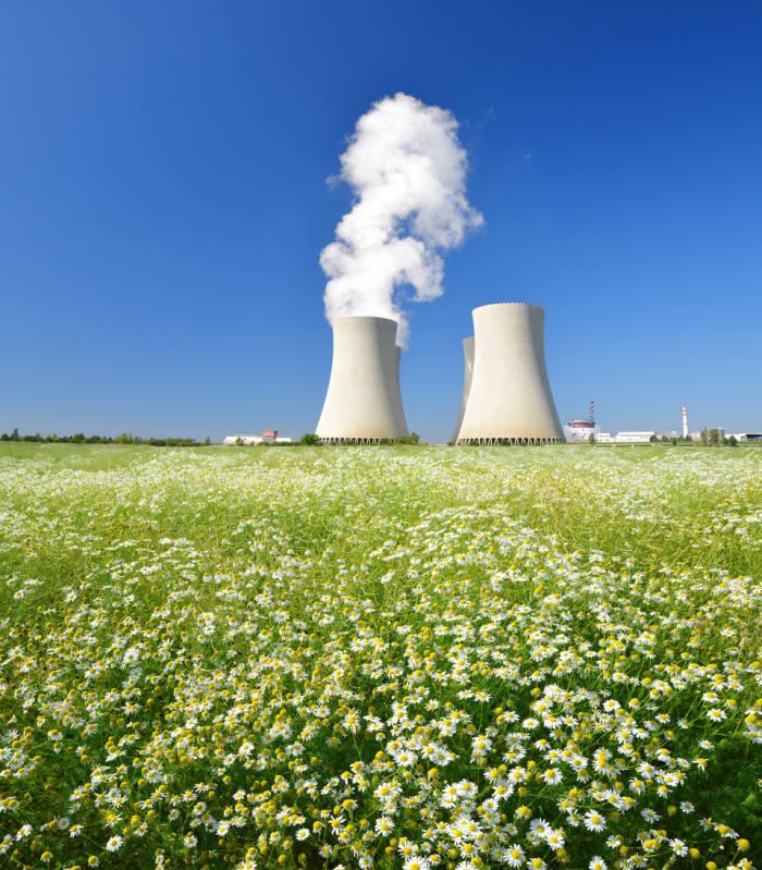 두 번째 원전 수출 눈앞...한전, 영국 원전사업 우선협상자 선정