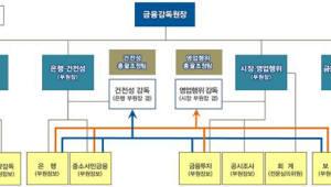 """금감원 조직 개편 """"권역별 조직 유지, 목적별 기능 보강"""""""