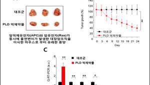 부산대, 대장암 발병 신호 동시억제하는 물질 발견