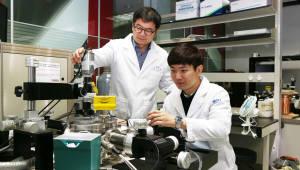 KAIST, 이차원 소재 이용 초저전력 유연메모리 개발