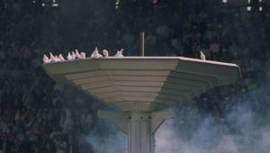 비둘기와 SI