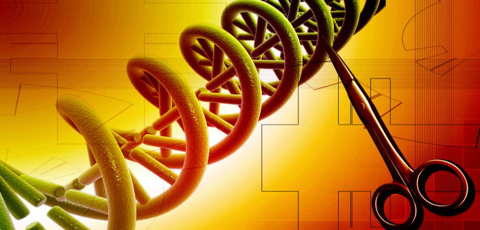 크리스퍼 유전자 가위 CRISPR.(사진=전자신문DB)