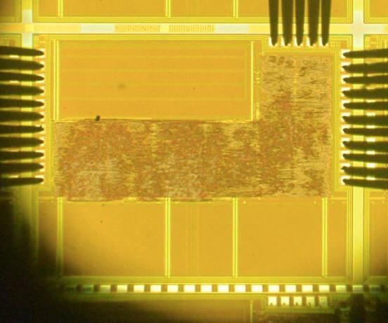 네오와인 도르카-3 칩 형상.