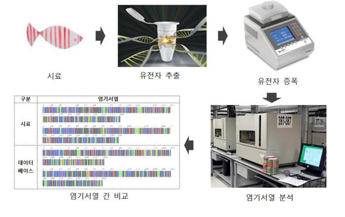 유전자 바코드 확보 과정