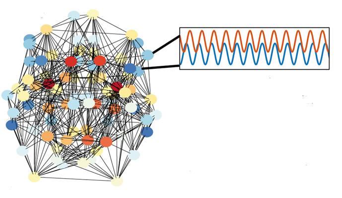 섬유근육통 환자들의 두뇌에서 폭발적 동기화되는 현상을 그림으로 나타내고 있다.