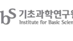 {htmlspecialchars(IBS, 연내 '30 연구단' 체제 구축…2021년 50개로)}