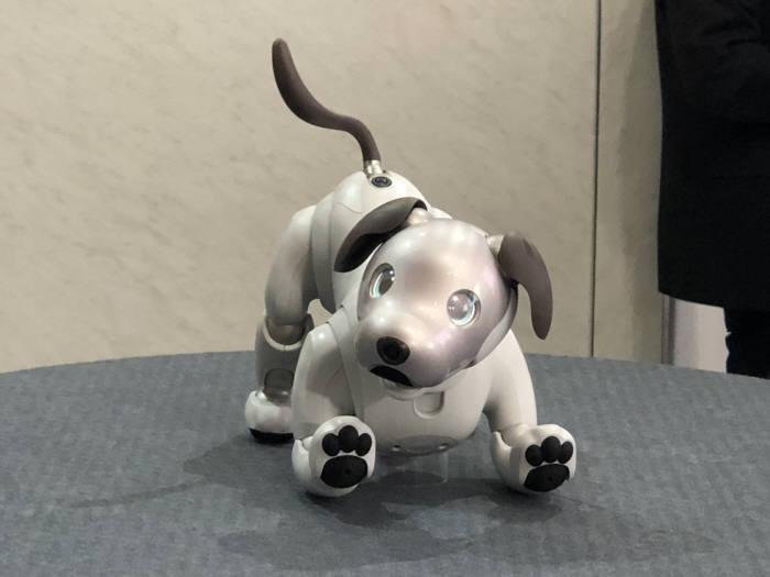 [CES 2018]소니, 11년만에 재탄생한 로봇 강아지 '아이보' 공개