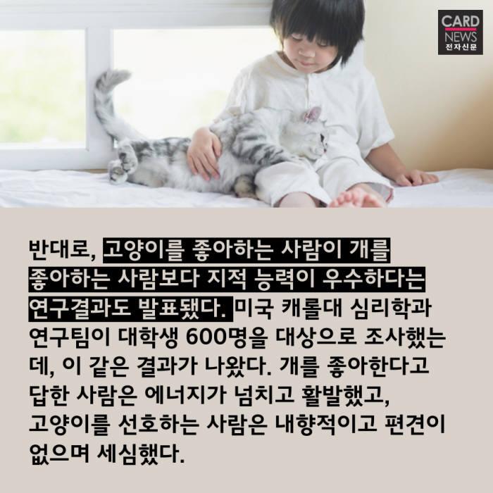 [카드뉴스]개와 고양이 누가 더 똑똑할까