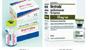 '면역항암제' 키트루다·옵디보, 적응증 확대됐지만 환자 고가 약값 부담 여전