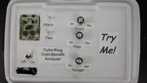 스스로 인식하는 'AI 갯민숭달팽이' 개발