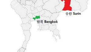 """태국 방콕도 광견병 출몰, """"여행객 주의해야"""""""