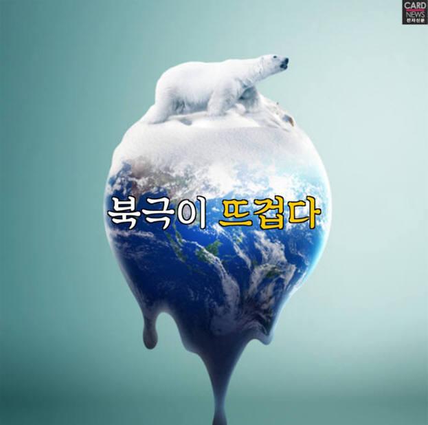 [카드뉴스]북극이 뜨겁다