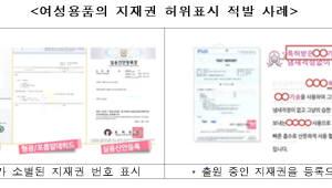 {htmlspecialchars(특허청, 여성용품 지식재산권 허위표시 11건 적발)}