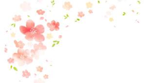 봄꽃의 과학