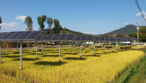 한수원, 국내 최초 '영농병행 태양광발전 시스템' 특허 획득