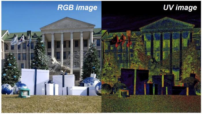 왼쪽이 일반 사진, 오른쪽이 QD 기술 기반 카메라 모듈을 활용해 촬영한 사진.