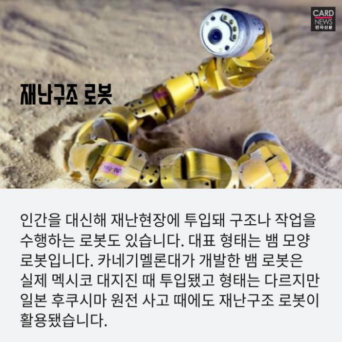 [카드뉴스]반려견 역할부터 재난현장 투입까지...'동물로봇' 전성시대