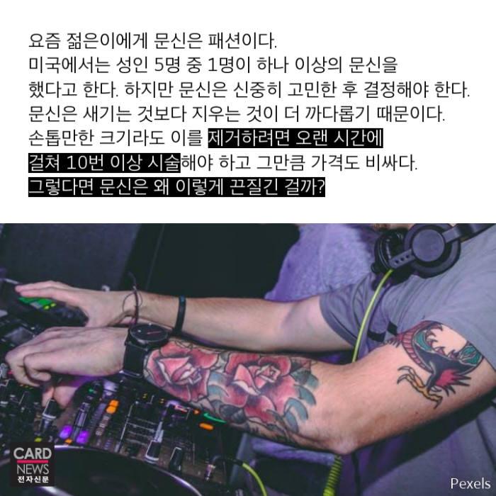 [카드뉴스]문신에 숨은 과학의 비밀