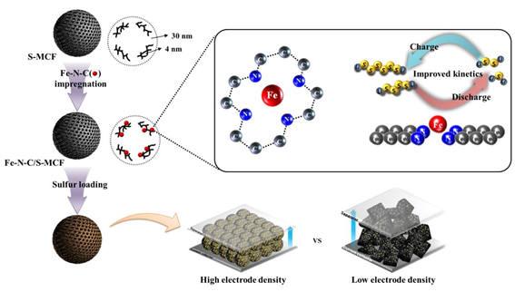 Fe-N-C 물질과의 강한 작용력 및 촉매 효과를 통해 리튬-황 이차전지 고성능화를 달성한 개념도.