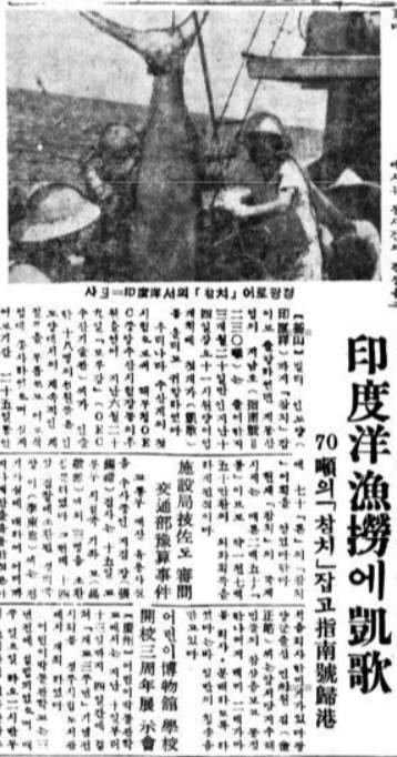 우리나라 최초의 원양어업 어선 '지남호'의 귀항 기사. 1957년 10월 16일 경향신문. 사진=네이버 뉴스라이브러리 캡처