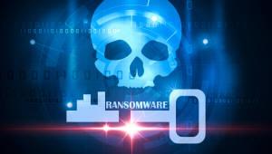 인터넷나야나 사태 1년...리눅스 보안은 여전히 소홀