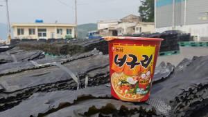 농심, 36년간 계속된 '완도산 다시마' 고집…올해도 400톤 구매