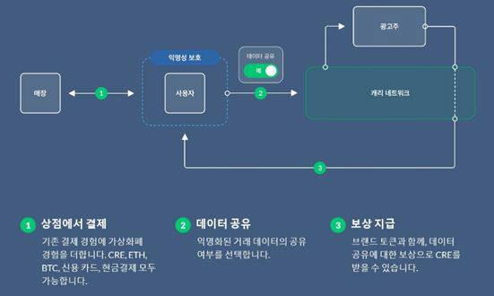 캐리 프로토콜 사업모델