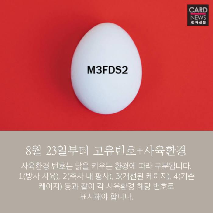[카드뉴스]달걀, 알고 먹읍시다
