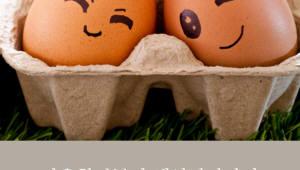 달걀, 알고 먹읍시다