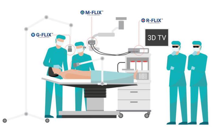 쓰리디메디비젼의 의료용 3D 영상처리 솔루션군