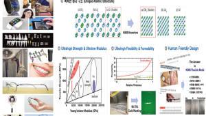 [주목할 우수 산업기술]초고강도·초저탄성 타이타늄 합금