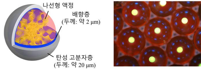 캡슐형 레이저 공진기의 구성(왼쪽) 및 광학 현미경 사진(오른쪽).